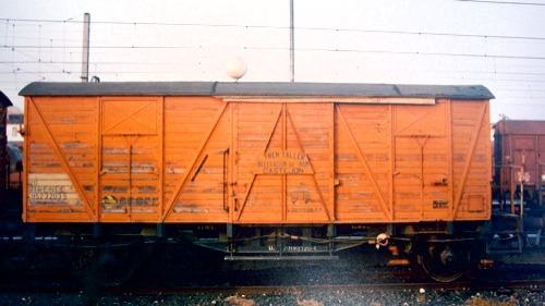 IMGP3119