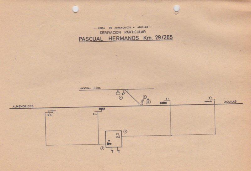 pascual-2